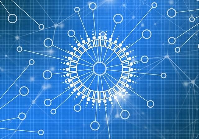 Blockchain Business Network