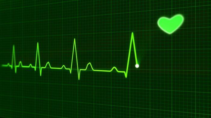 Fitbit Cows Heartbeat