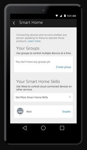 Smart Home Nest With Alexa