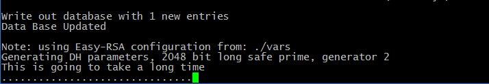Home Vpn Server Raspberry Pi Install Waiting