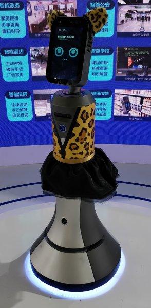 Personal Robot Liebao