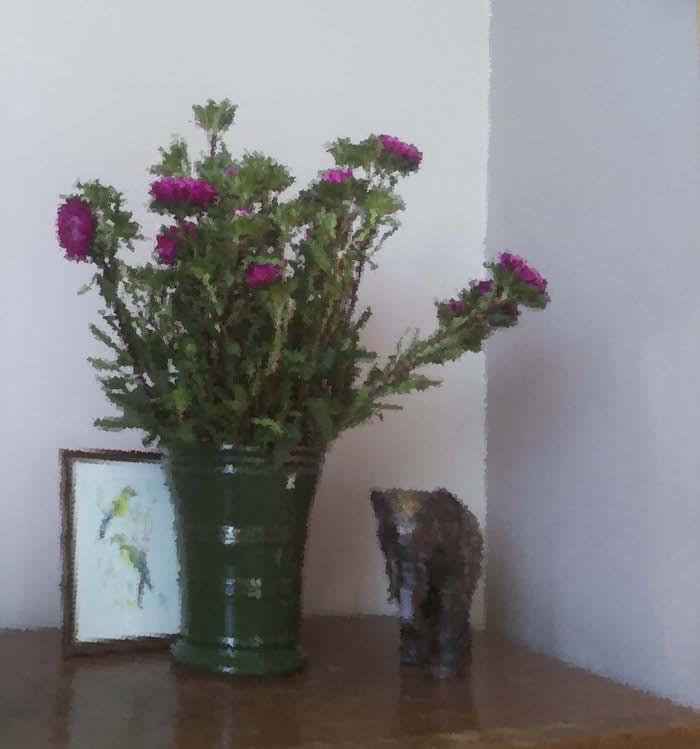 Fitting Raspi Camera Flowers Oilpaint
