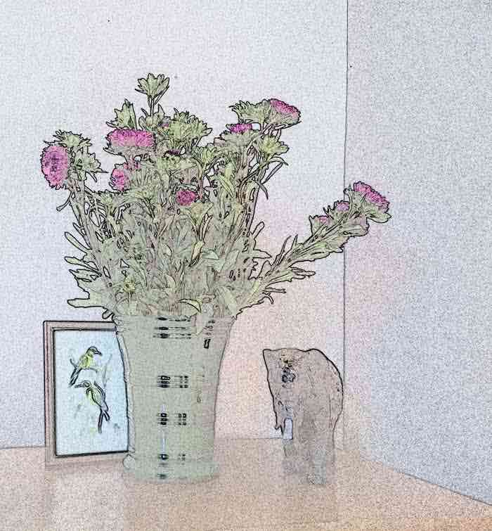Fitting Raspi Camera Flowers Watercolour