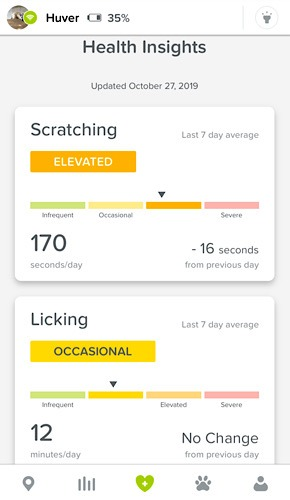 Review Whistle Go Health Insights