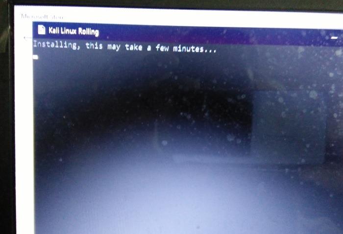 Installing Kali Linux Pc