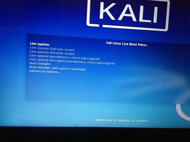 Kali Linux Launch Live System Forensic Mode