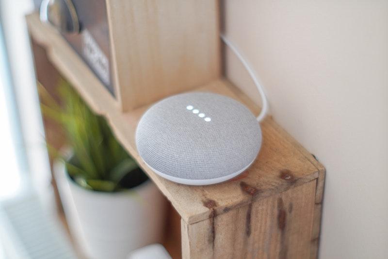 Funny Things Google Home Mini Speaker